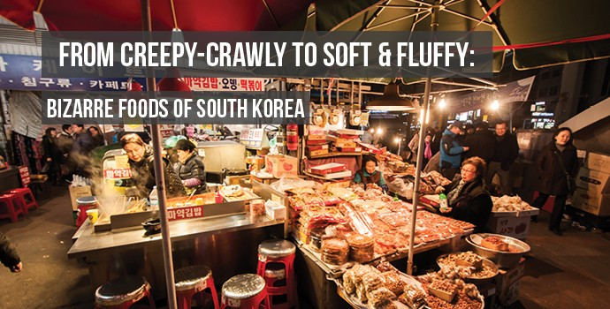 Bizarre Foods of Korea