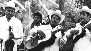 The trio Los Camperos de Valles plays son huasteco. Photo from NPR.