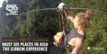 Must See Places in Asia - The Gibbon Experience