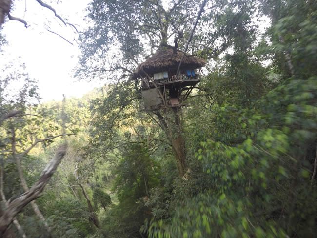 Our treehouse 40 meters above the ground!